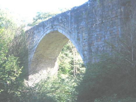 Causey Arch View from north of oldest rail bridge in the uk