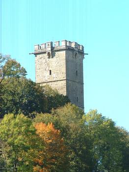 Donjon de l'Aubespin, Montbard
