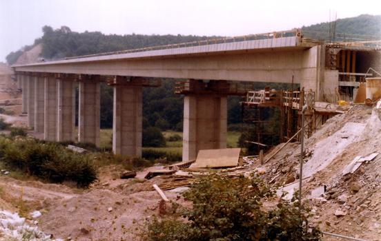 TGV Paris-South-East Digoine Viaduct