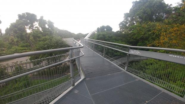 Alexandra Road Footbridge