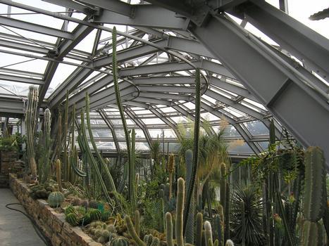 Jardin botanique de BerlinSerre I - cactées