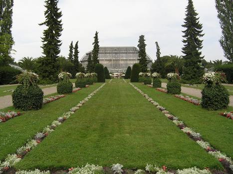 Berlin Botanical GardensGreat Tropical Green House