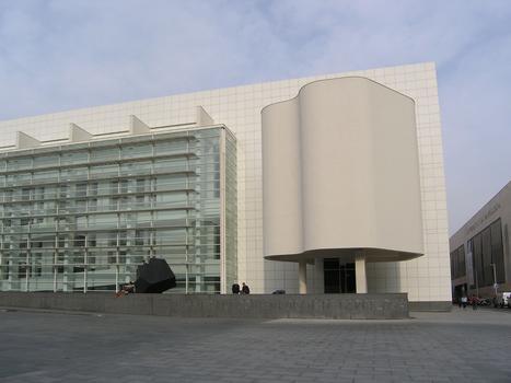 Museu d'art Contemorani de Barcelona (MACBA)