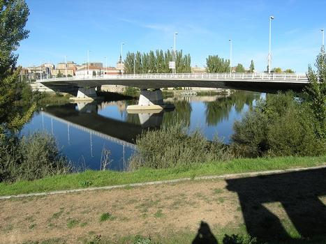 Puente Principe de Asturias, Salamanca