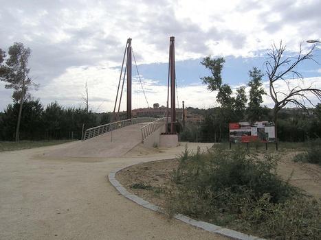Pasarela de Polverines, Toledo