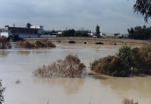 Brücke in Medjez El Bab während eines Hochwasser