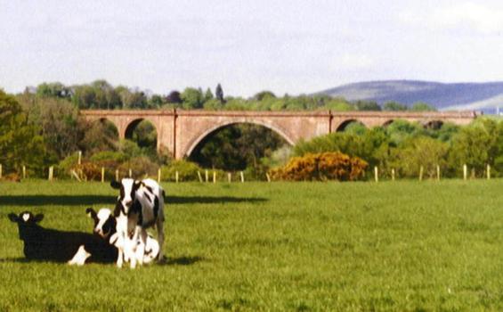 Ballochmyle Viaduct