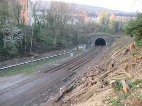 Tunnel du Goldberg