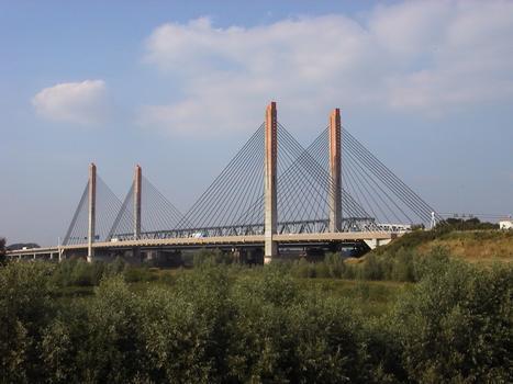 Pont Martinus Nijhof, Zaltbommel