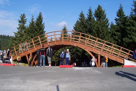 Skiwegbrücke am Biathlon-Stadion in Oberhof