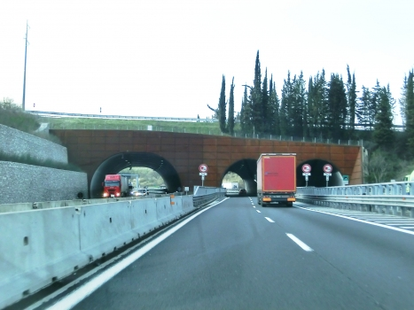 Tunnel de Lastrone Sud