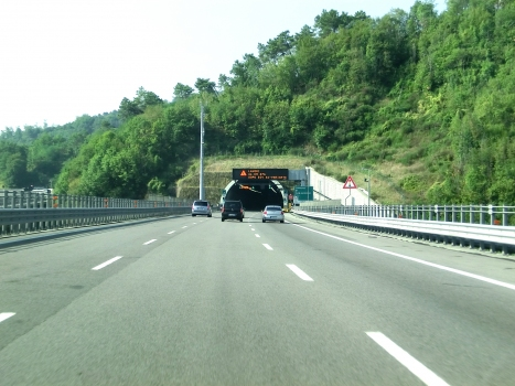 Tunnel Manganaccia