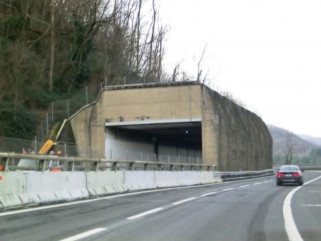 Monte Frassino 1 Tunnel southern portal