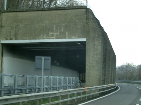 Monte Frassino 2 Tunnel southern portal