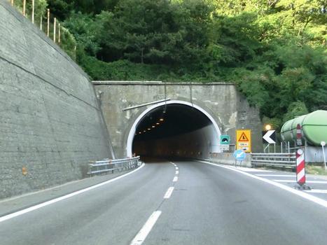 Tunnel Montespicchio 1