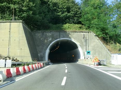 Tunnel Montespicchio 2