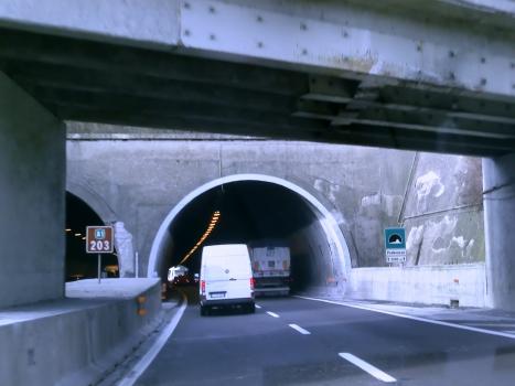 Poderuzzo Tunnel southern portal