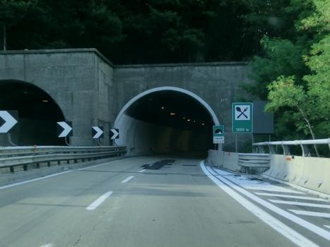 Tunnel Poggettone