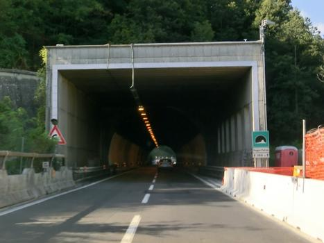 Tunnel Poggio Palina