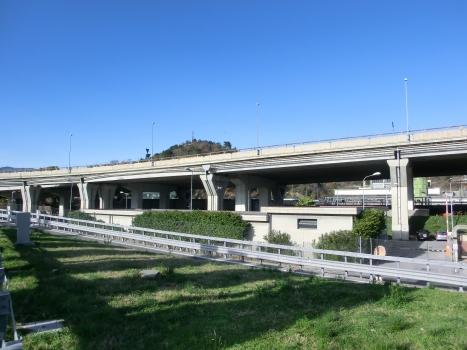 Zinola Viaduct
