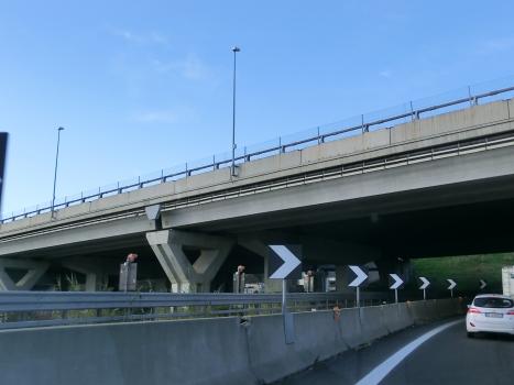 Talbrücke Zinola