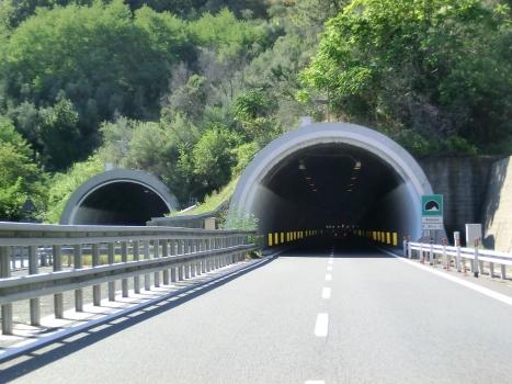 Bozzano Tunnel eastern portals