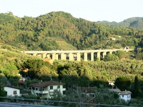 Massarosa Viaduct