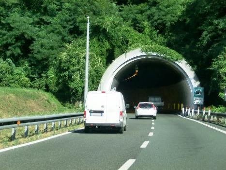 Tunnel Bozzano