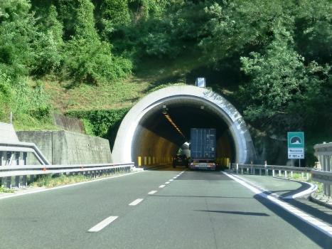 Tunnel Massarosa