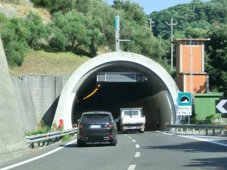 Monte Quiesa Tunnel western portal