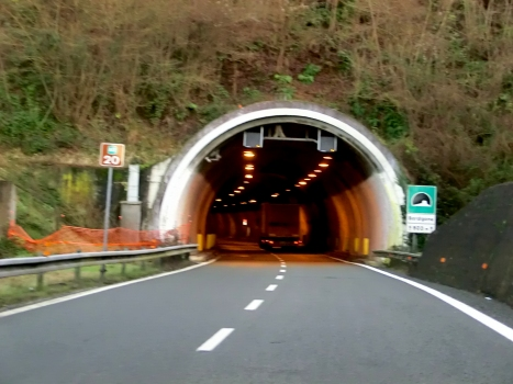 Tunnel Bordigona