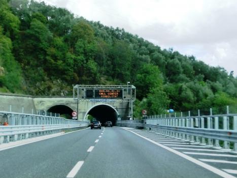 Casalino Tunnel western portals