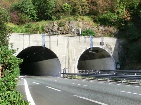 Monte Giugo Tunnel eastern portals
