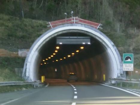 Tunnel de Pian della Madonna