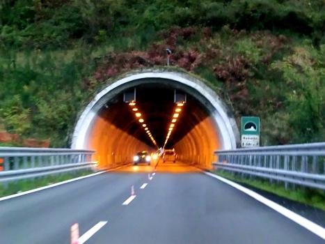 Ramello Tunnel western portal