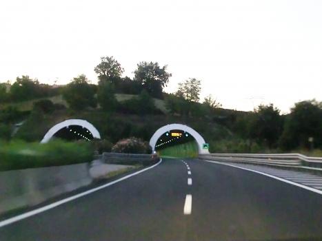 Rimazzano Tunnel southern portals