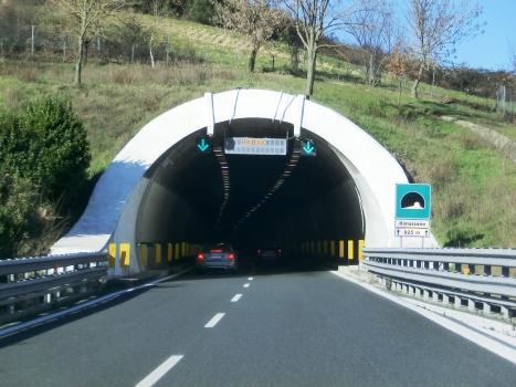 Rimazzano Tunnel southern portal