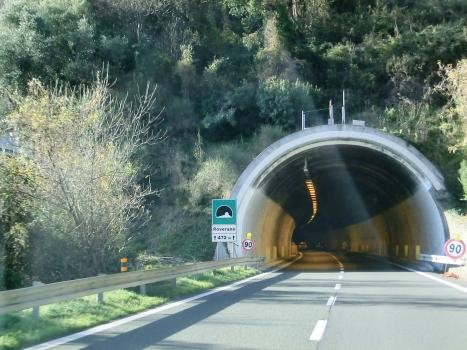 Roverano Tunnel western portal
