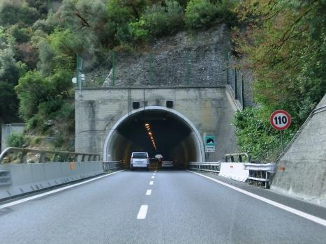Sessarego Tunnel
