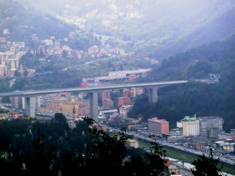 Autostrada A 12 bei Genua - Talbrücke über den torrente Bisagno