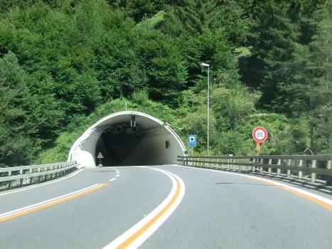 Tunnel Barenburg