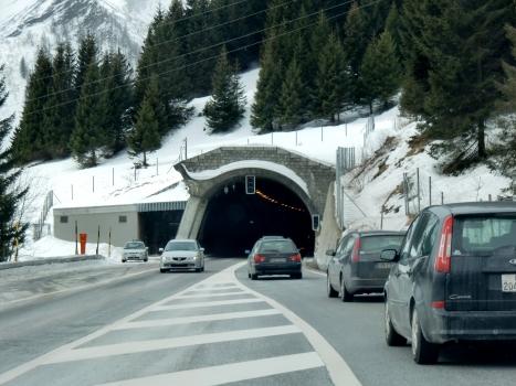 Tunnel de Gei