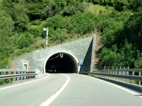 Tunnel de Wegerhaus
