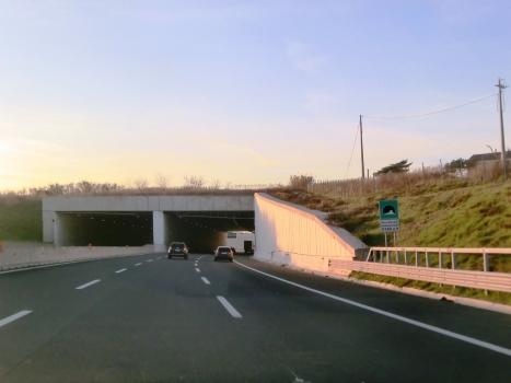 Tunnel Case Bruciate