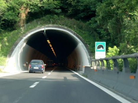 Montesecco Tunnel
