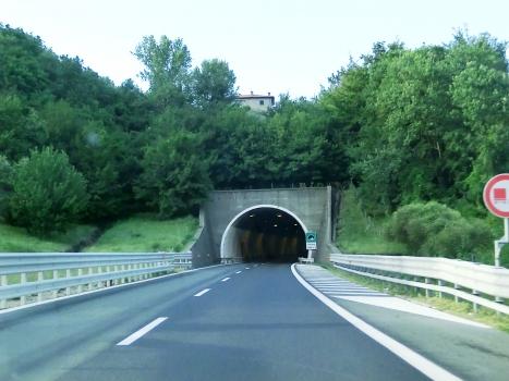 Tunnel Morana