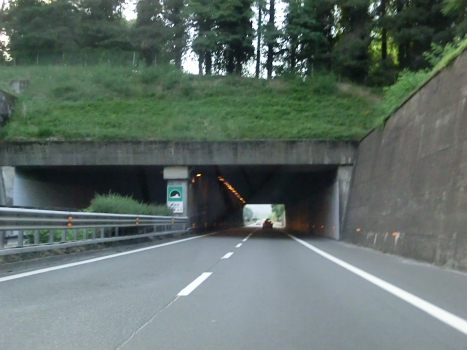 Tunnel Vico