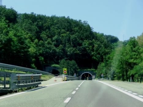 Tunnel Vizzana