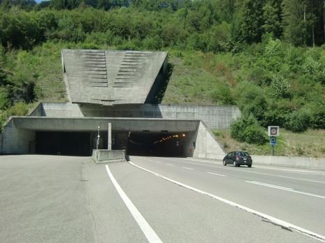 Tunnel du Mont-Terri