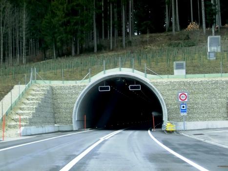 Tunnel de Loveresse